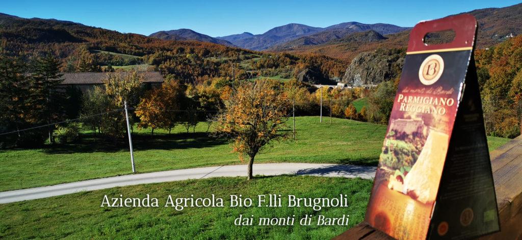 Azienda Agricola Bio Fratelli Brugnoli